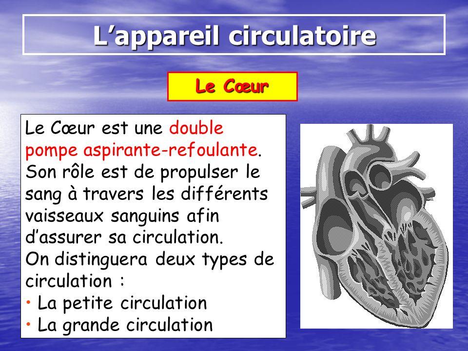 Le Cœur Lappareil circulatoire Le Cœur est une double pompe aspirante-refoulante. Son rôle est de propulser le sang à travers les différents vaisseaux