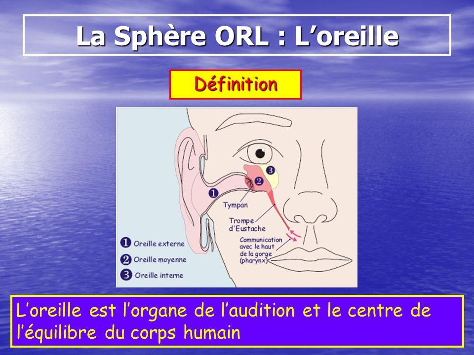 Définition Loreille est lorgane de laudition et le centre de léquilibre du corps humain La Sphère ORL : Loreille