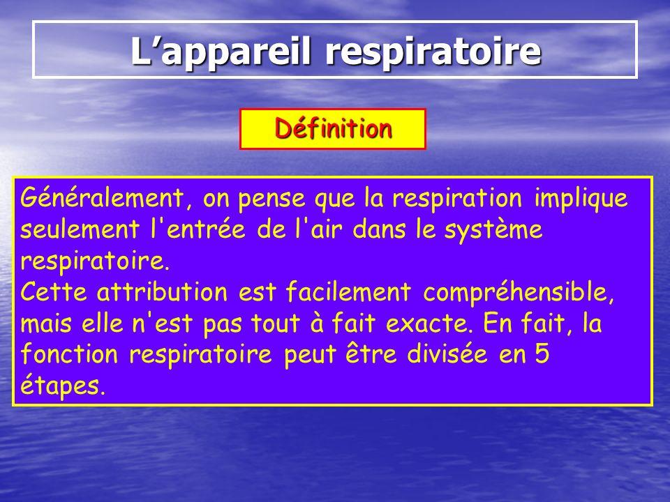Définition Généralement, on pense que la respiration implique seulement l'entrée de l'air dans le système respiratoire. Cette attribution est facileme
