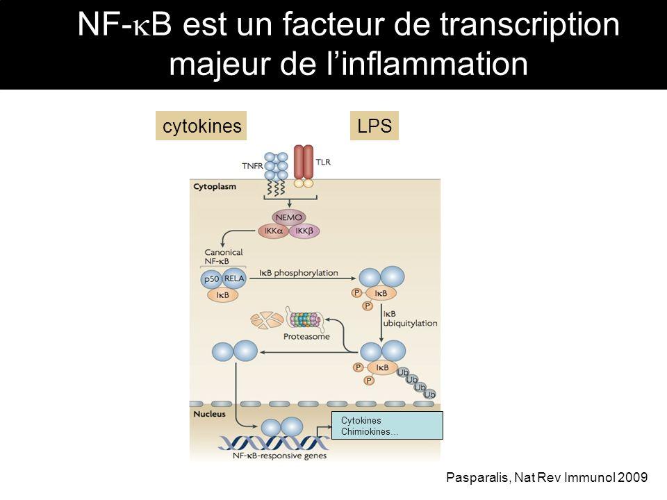 NF- B est un facteur de transcription majeur de linflammation Cytokines Chimiokines… Pasparalis, Nat Rev Immunol 2009 cytokinesLPS