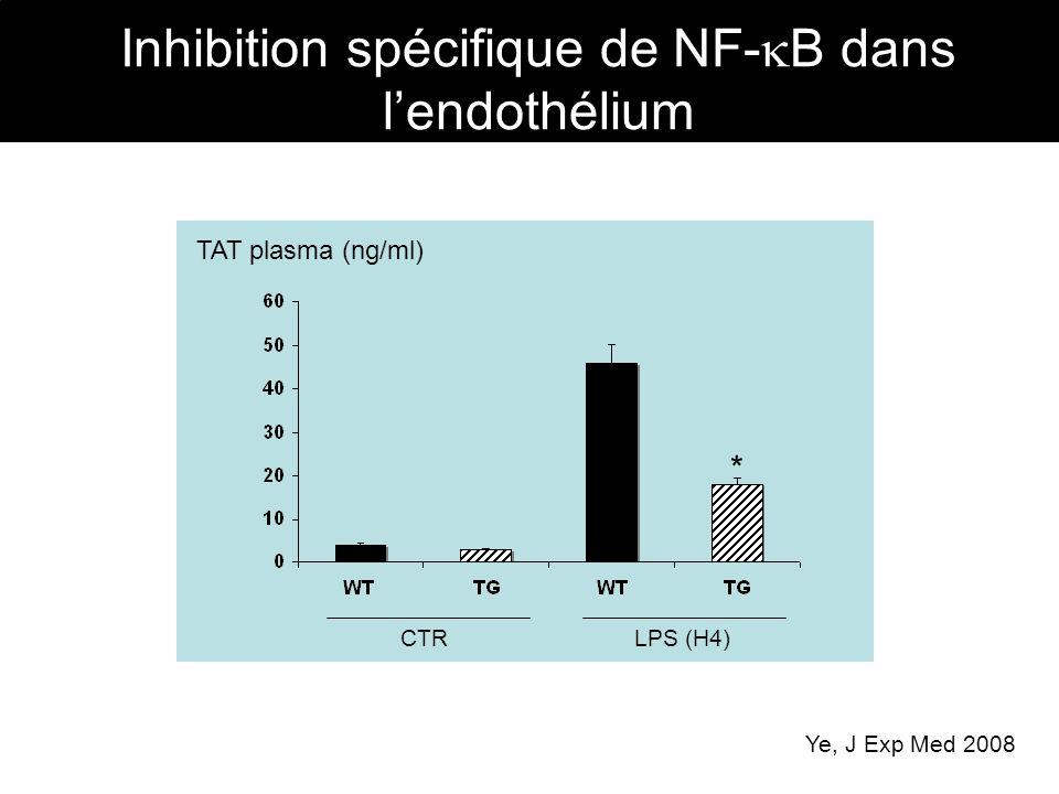 Inhibition spécifique de NF- B dans lendothélium CTRLPS (H4) TAT plasma (ng/ml) Ye, J Exp Med 2008 *