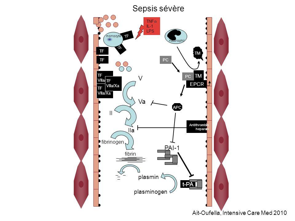 TF V Va II fibrin fibrinogen IIa TNF IL-1 LPS TF VIIa/Xa TF VIIa/Xa TF VIIa/Xa monocyte plasmin PC plasminogen t-PA APC PAI-1 TM EPCR PC Antithrombin