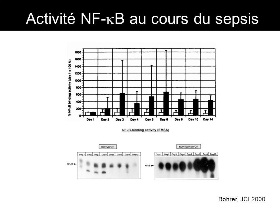 Linhibition de NF- B dans des modèles murins de sepsis : - Prévient lhypotension artérielle (Liu, J Immunol 1997) - Empêche la dysfonction ventriculaire gauche (Haudek, Am J Physiol 2001) - Prévient laugmentation de la perméabilité capillaire (Liu, Mol pharmacol 1999) - Diminue lexpression de nombreux gènes de linflammation (Liu, Circulation 1999) Bohrer, JCI 1997