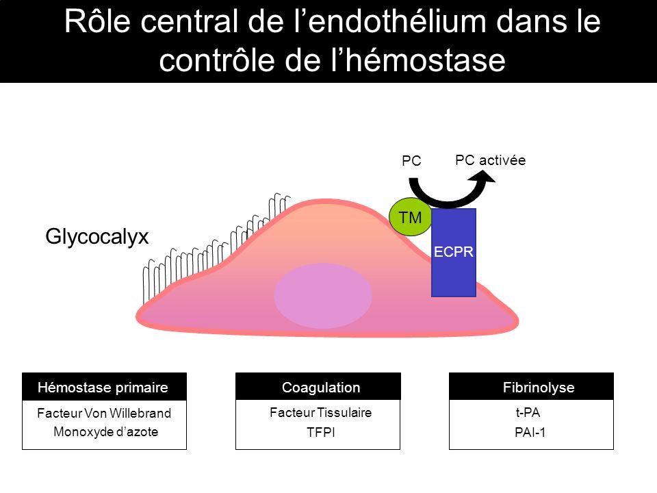Facteur Von Willebrand Monoxyde dazote Facteur Tissulaire TFPI t-PA PAI-1 Hémostase primaireCoagulationFibrinolyse Glycocalyx ECPR TM PC PC activée Rô