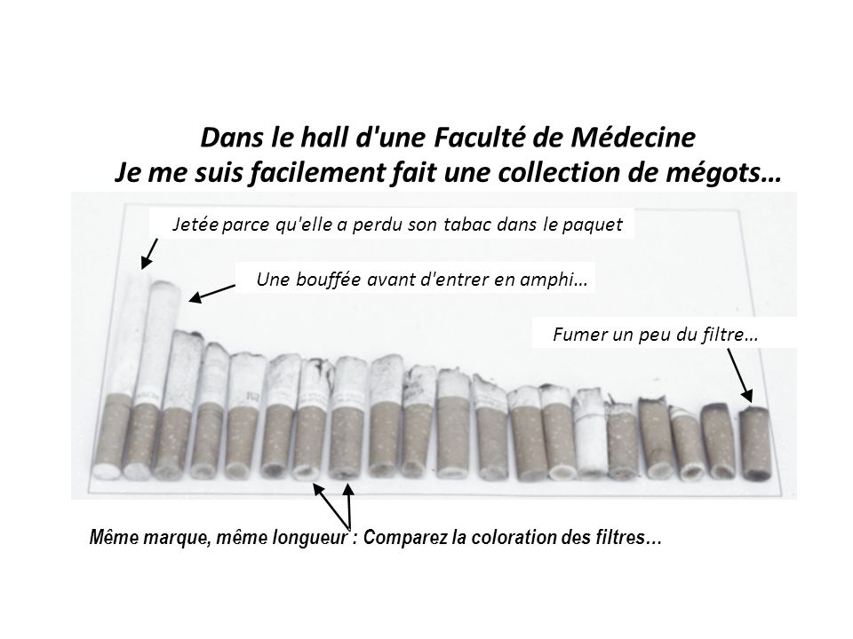 0 -.1.1-.2-.4-.5-.6-.7-.8-.9-1.0 + Rendement machine en nicotine (mg par cigarette) 0.2 0.4 0.6 0.8 1.0 1.2 1.4 1.6 Absorption de nicotine par cigarette (mg) Absorption réelle de nicotine par cigarette comparée à l absorption prédite par leur rendement machine Health Survey for England 1998 (2031 fumeurs) Absorption réelle par le fumeur Absorption prédite par la machine Jarvis MJ, Boreham R, Primatesta P, Feyerabend C, Bryant A.