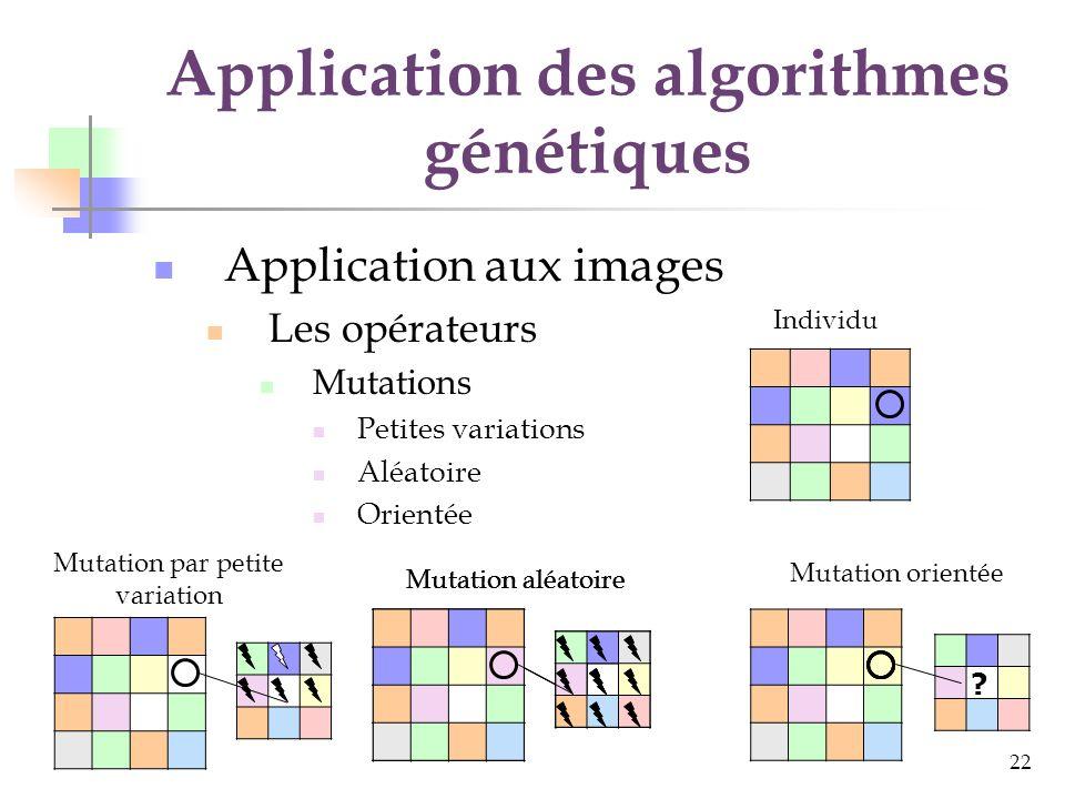 23 Application des algorithmes génétiques Les améliorations Calcul de la fonction dadaptation (fitness) Le découpage des images