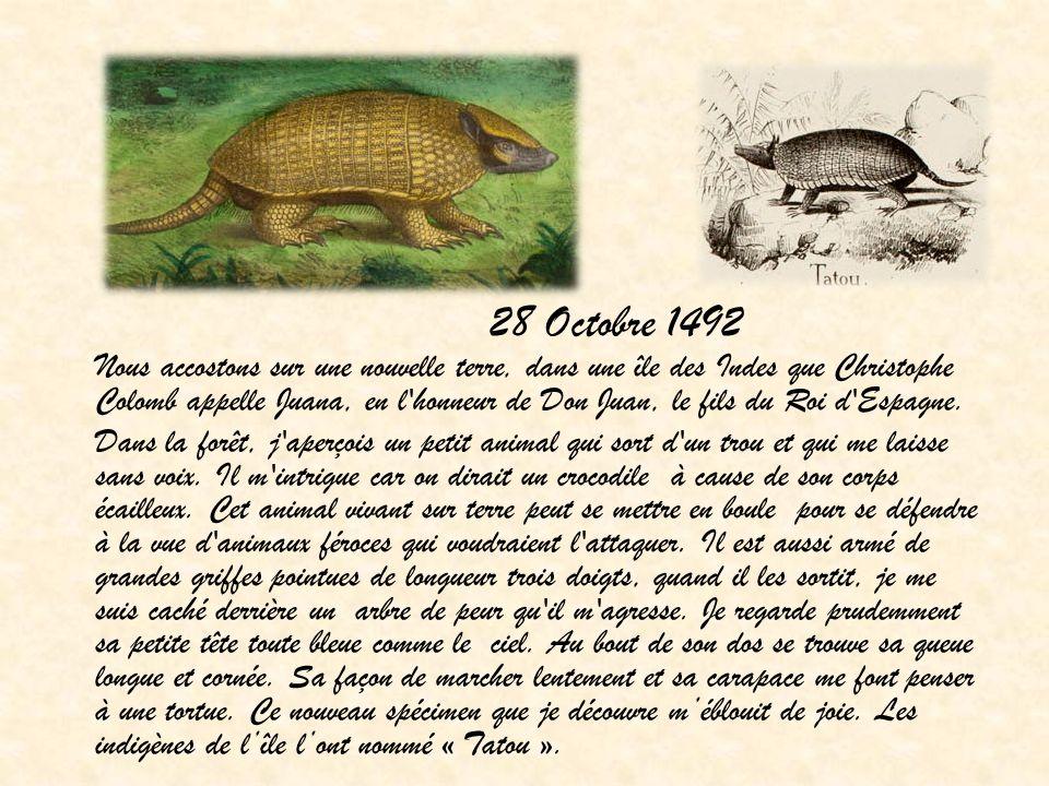 28 Octobre 1492 Nous accostons sur une nouvelle terre, dans une île des Indes que Christophe Colomb appelle Juana, en l'honneur de Don Juan, le fils d