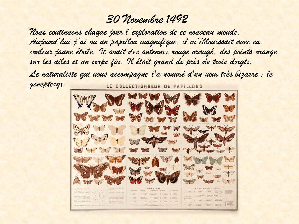 30 Novembre 1492 Nous continuons chaque jour lexploration de ce nouveau monde. Aujourdhui jai vu un papillon magnifique, il méblouissait avec sa coule