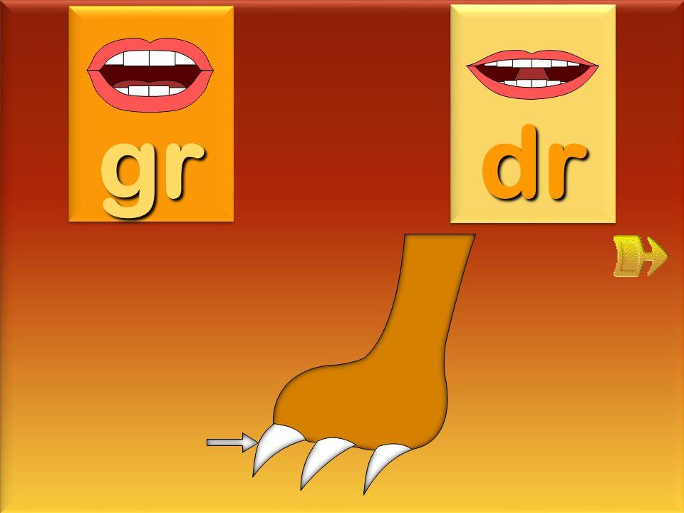 grenadine gr dr