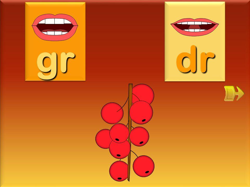 dragée gr dr
