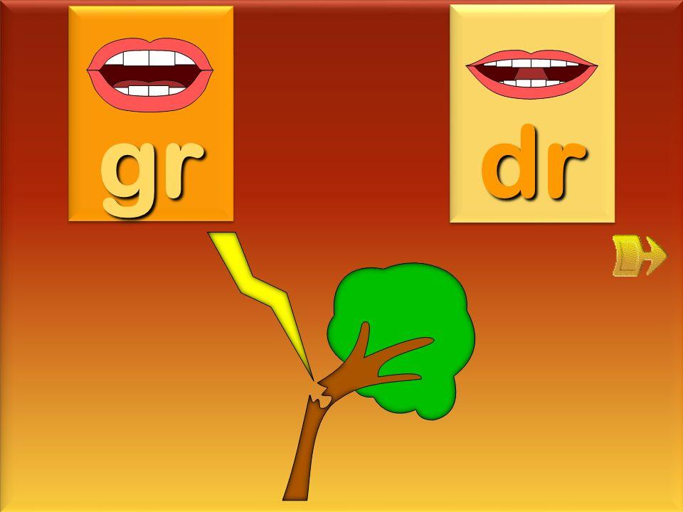 désordre gr dr