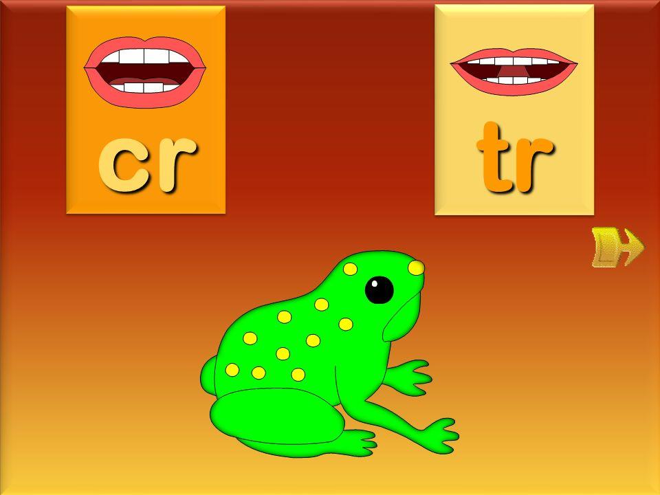 microsc cr tr