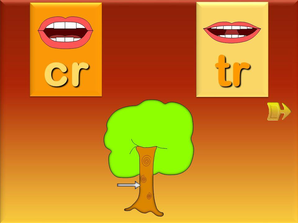croquette cr tr