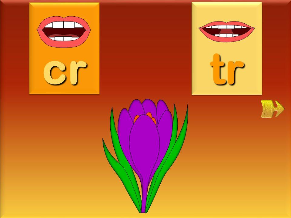 trombone tr cr