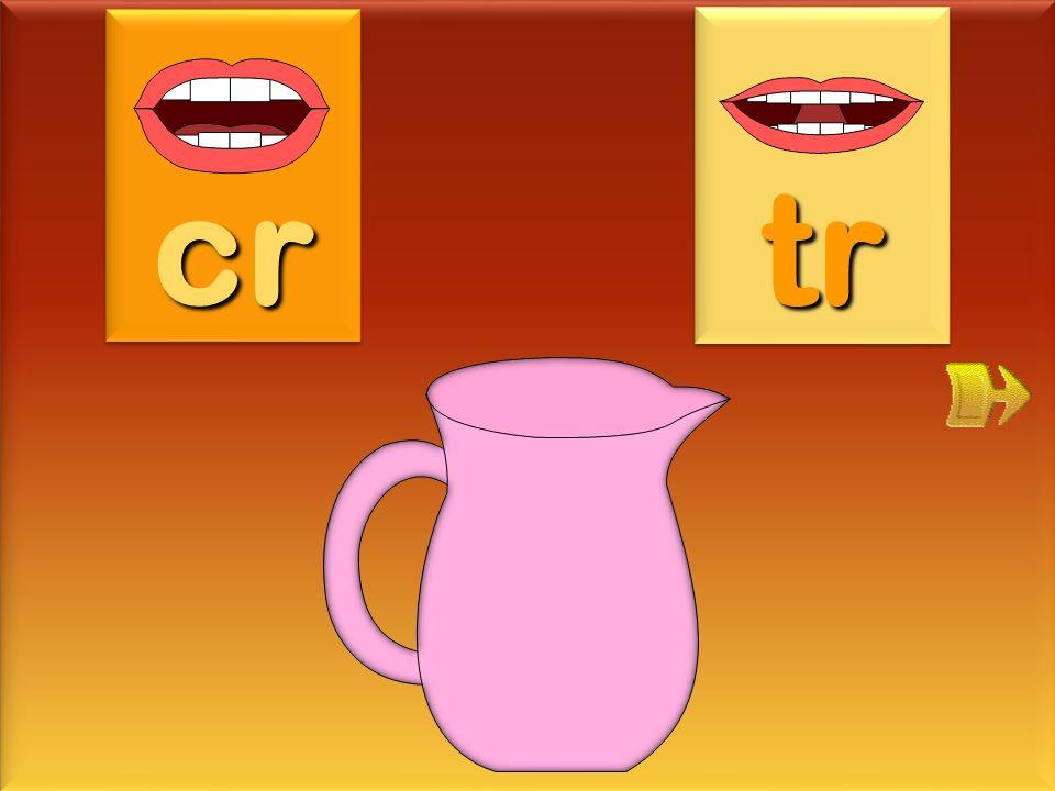 crocus cr tr