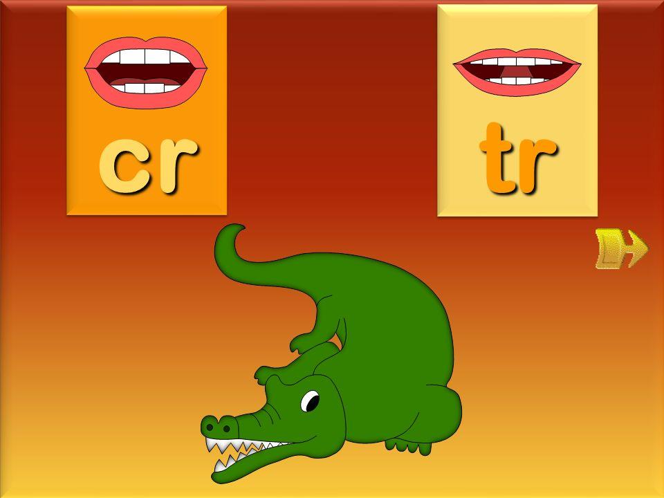 crocodile cr tr