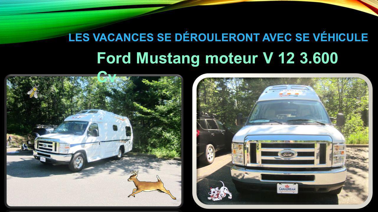 LES VACANCES SE DÉROULERONT AVEC SE VÉHICULE Ford Mustang moteur V 12 3.600 Cv
