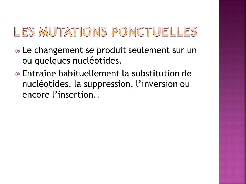 Le changement se produit seulement sur un ou quelques nucléotides. Entraîne habituellement la substitution de nucléotides, la suppression, linversion