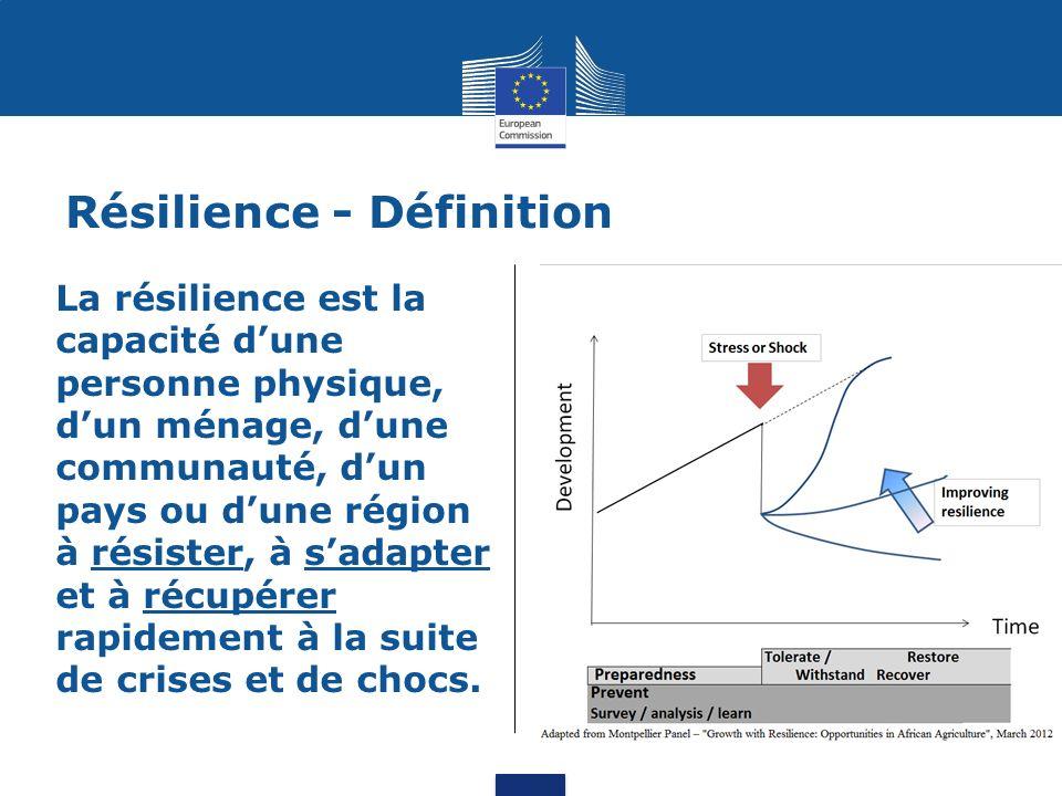 Résilience - Définition La résilience est la capacité dune personne physique, dun ménage, dune communauté, dun pays ou dune région à résister, à sadapter et à récupérer rapidement à la suite de crises et de chocs.
