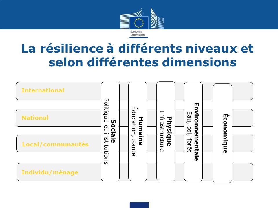 La résilience à différents niveaux et selon différentes dimensions International National Local/communautés Individu/ménage