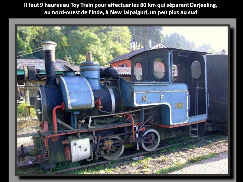 Il faut 9 heures au Toy Train pour effectuer les 80 km qui séparent Darjeeling, au nord-ouest de l Inde, à New Jalpaiguri, un peu plus au sud