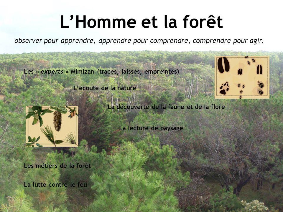 LHomme et la forêt observer pour apprendre, apprendre pour comprendre, comprendre pour agir. Les « experts » Mimizan (traces, laissés, empreintes) Léc