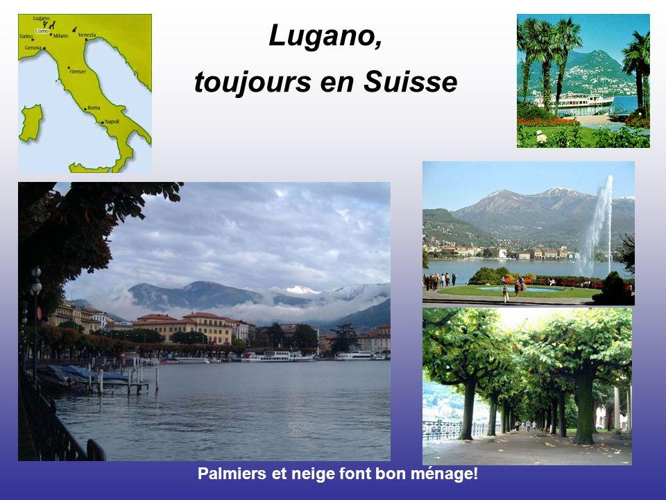 Lugano, toujours en Suisse Palmiers et neige font bon ménage!
