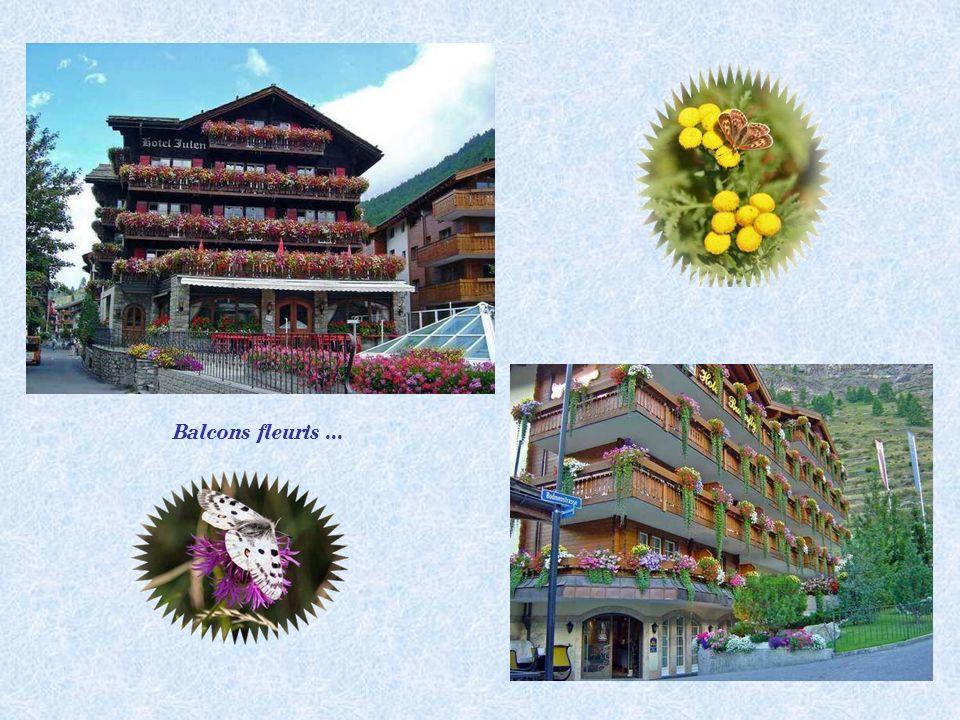 Balcons fleuris...