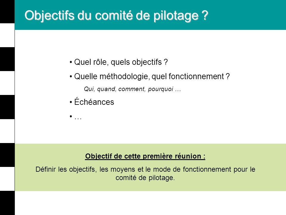 Objectifs du comité de pilotage ? Quel rôle, quels objectifs ? Quelle méthodologie, quel fonctionnement ? Qui, quand, comment, pourquoi … Échéances …