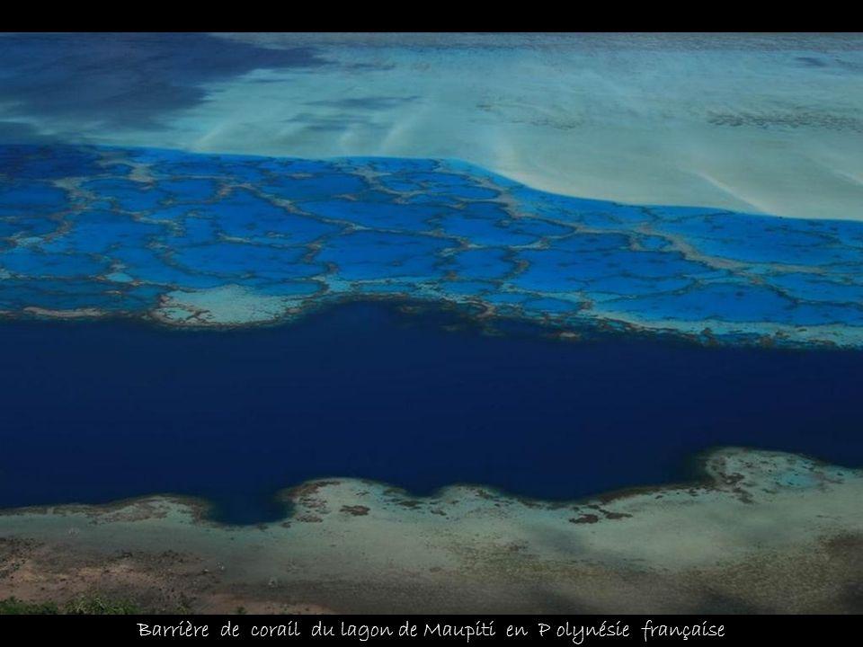 Barrière de corail du lagon de Maupiti en P olynésie française