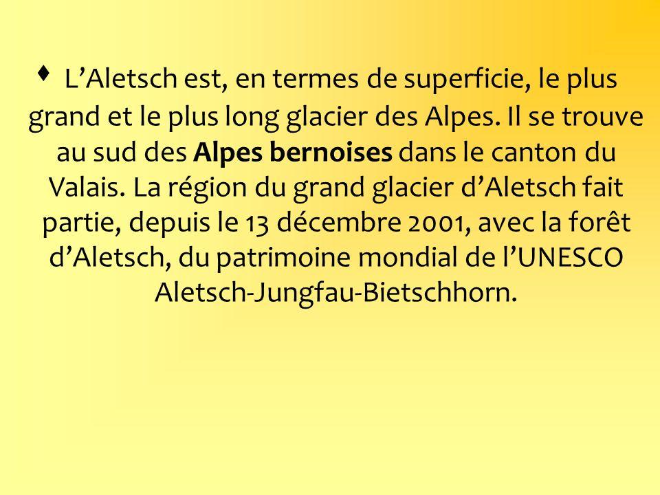 LAletsch est, en termes de superficie, le plus grand et le plus long glacier des Alpes. Il se trouve au sud des Alpes bernoises dans le canton du Vala