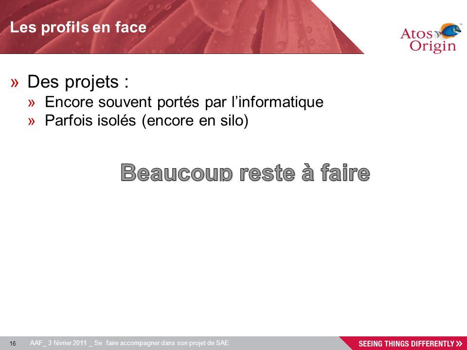 16 AAF_ 3 février 2011 _ Se faire accompagner dans son projet de SAE Les profils en face »Des projets : »Encore souvent portés par linformatique »Parf