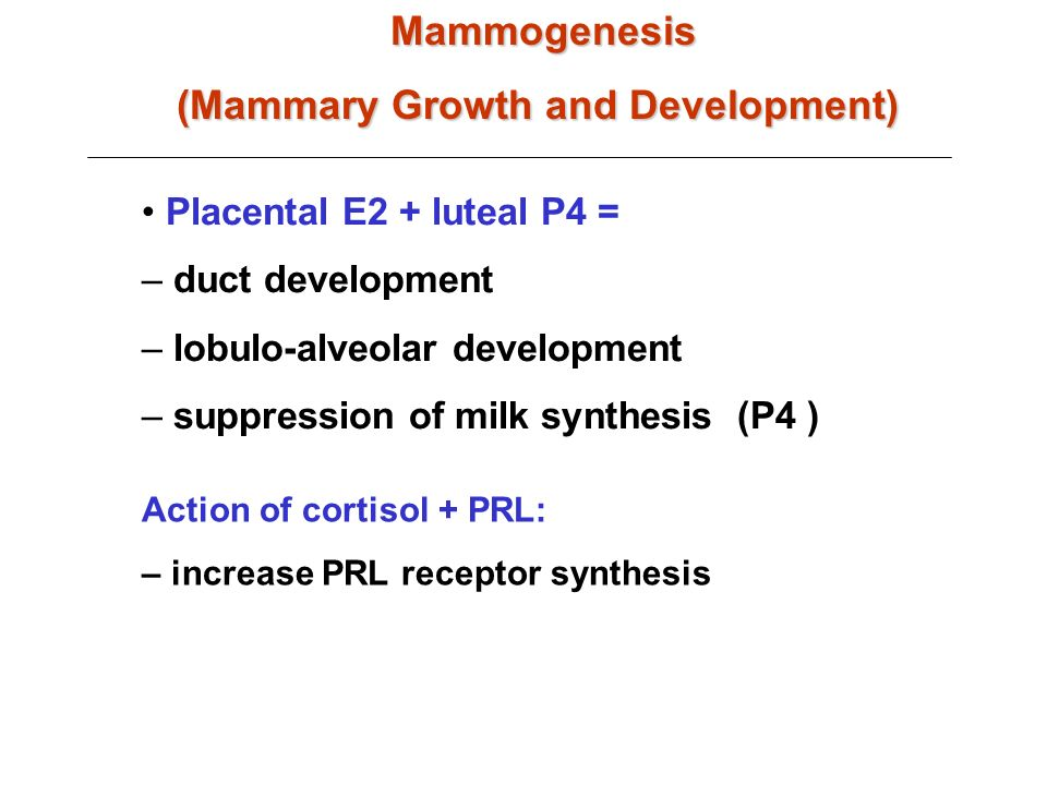 Placental E2 + luteal P4 = – duct development – lobulo-alveolar development – suppression of milk synthesis (P4 )Mammogenesis (Mammary Growth and Development) Action of cortisol + PRL: – increase PRL receptor synthesis