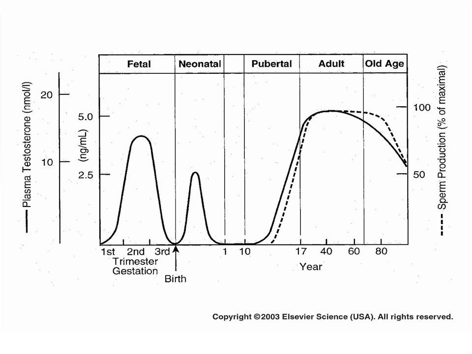 BIOLOGIQUEMENT La testosterone diminue de 1% a partir de lage de 40 ans La DHEA diminue La GH et la MELATONINE diminuent aussi