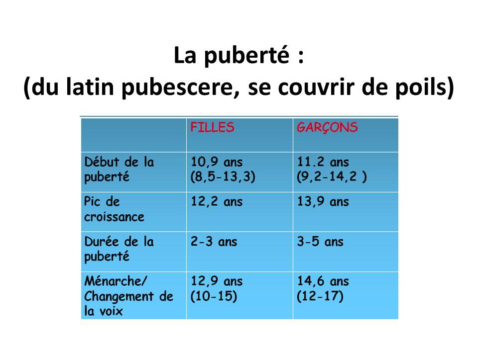 La puberté : (du latin pubescere, se couvrir de poils)