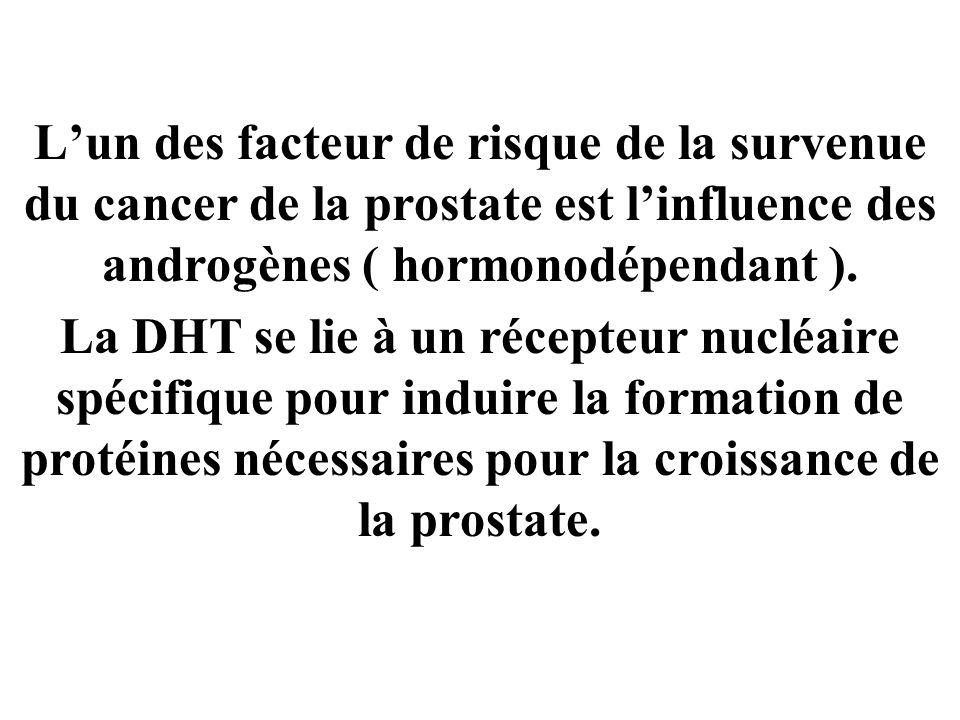 Lun des facteur de risque de la survenue du cancer de la prostate est linfluence des androgènes ( hormonodépendant ).