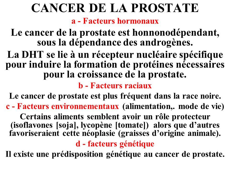 CANCER DE LA PROSTATE a - Facteurs hormonaux Le cancer de la prostate est honnonodépendant, sous la dépendance des androgènes.