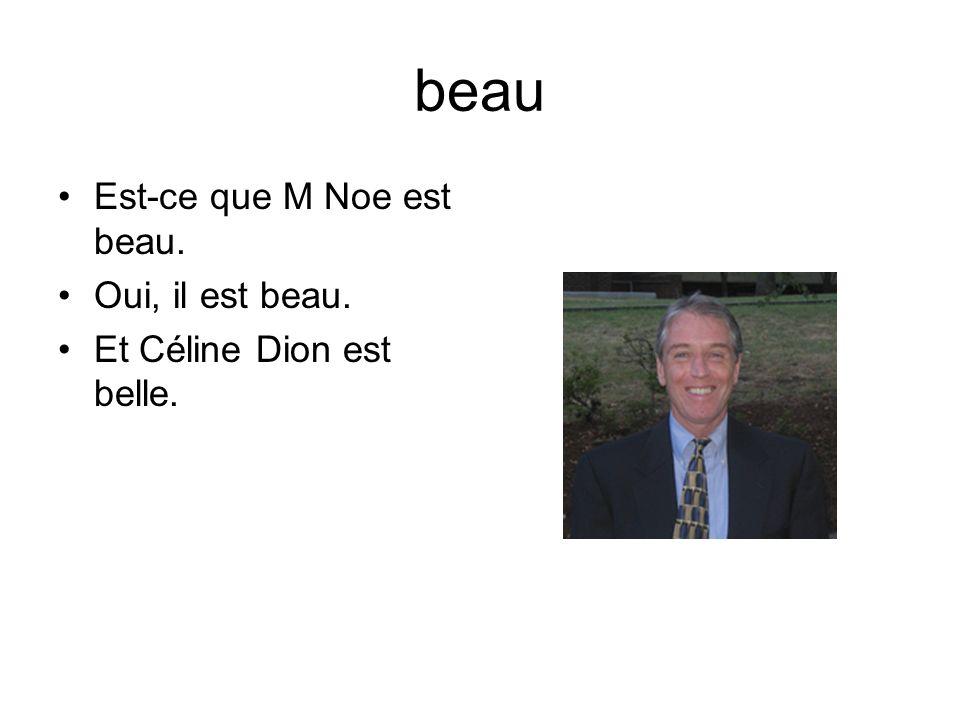 beau Est-ce que M Noe est beau. Oui, il est beau. Et Céline Dion est belle.