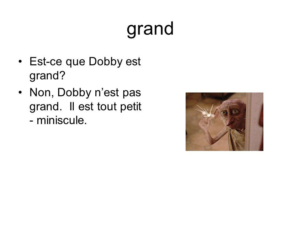 grand Est-ce que Dobby est grand Non, Dobby nest pas grand. Il est tout petit - miniscule.