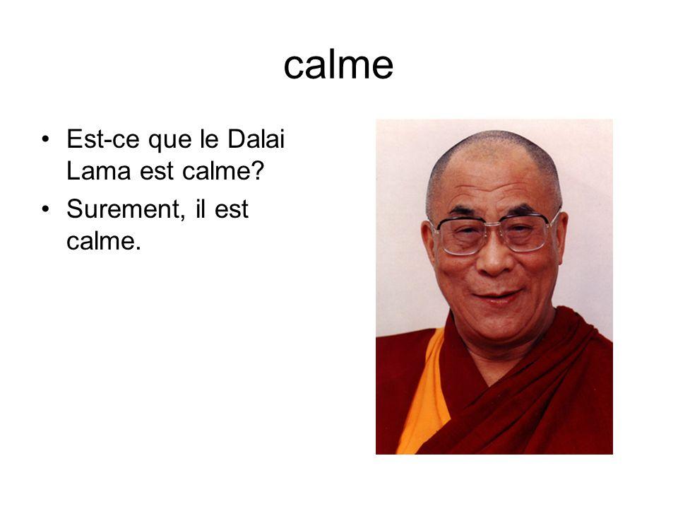 calme Est-ce que le Dalai Lama est calme Surement, il est calme.