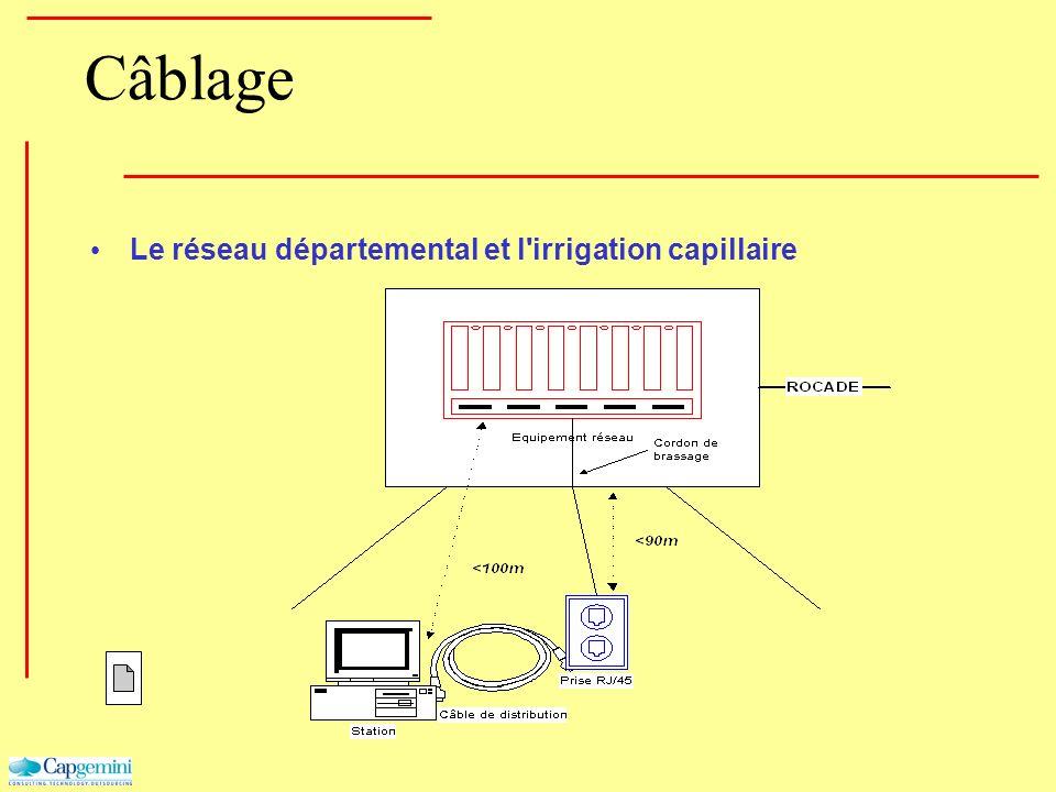 Câblage Le réseau départemental et l'irrigation capillaire