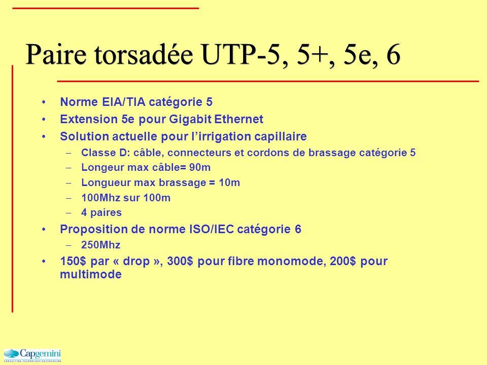 Paire torsadée UTP-5, 5+, 5e, 6 Norme EIA/TIA catégorie 5 Extension 5e pour Gigabit Ethernet Solution actuelle pour lirrigation capillaire – Classe D: