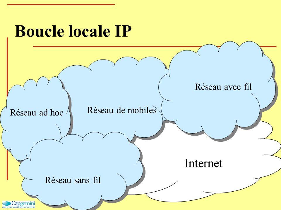 Internet Réseau de mobiles Réseau avec fil Réseau ad hoc Réseau sans fil Boucle locale IP