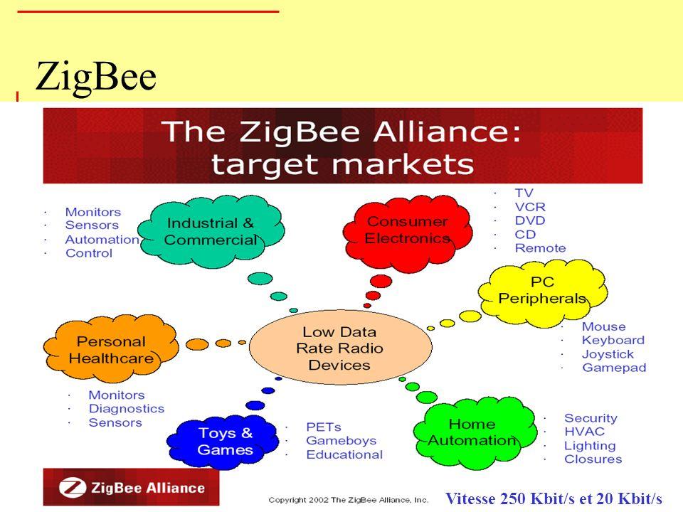 ZigBee Vitesse 250 Kbit/s et 20 Kbit/s