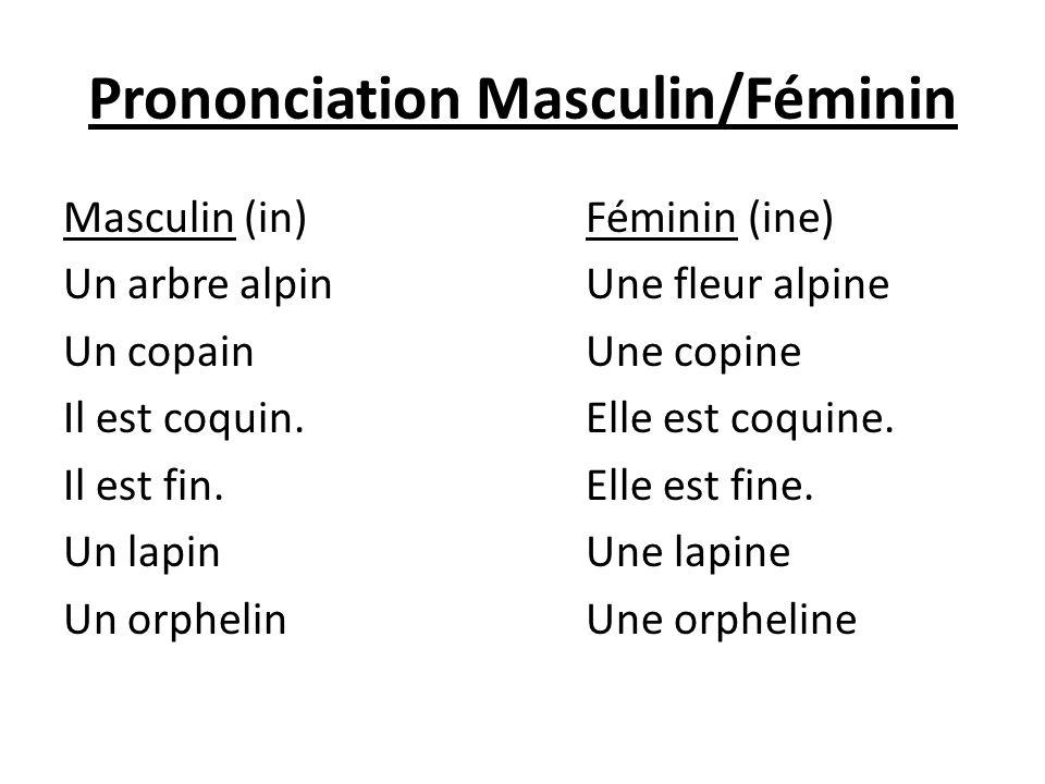 Prononciation Masculin/Féminin Masculin (in)Féminin (ine) Un arbre alpinUne fleur alpine Un copainUne copine Il est coquin.Elle est coquine. Il est fi