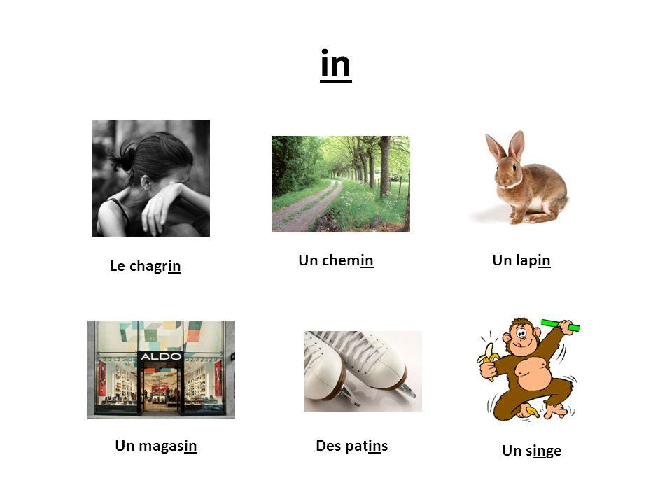 in Le chagrin Un singe Un magasinDes patins Un lapinUn chemin