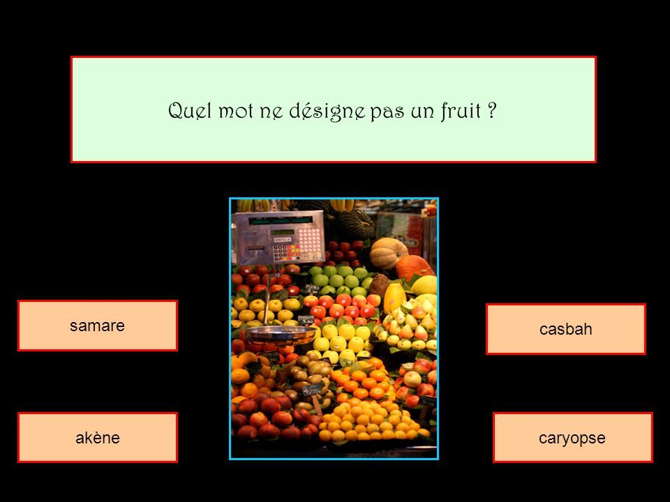 Quel mot ne désigne pas un fruit ? samare casbah akènecaryopse