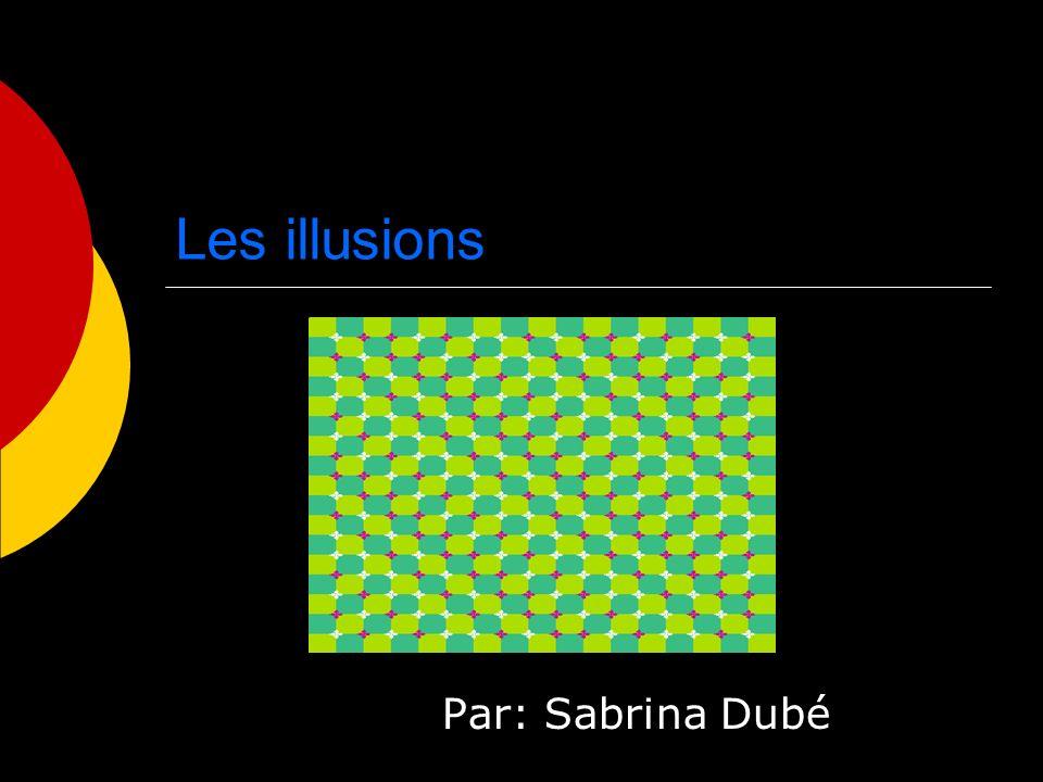 Il y a plusieurs illusions connu, mais dautre moins connu.