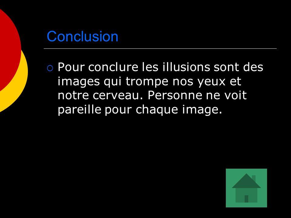 Conclusion Pour conclure les illusions sont des images qui trompe nos yeux et notre cerveau. Personne ne voit pareille pour chaque image.