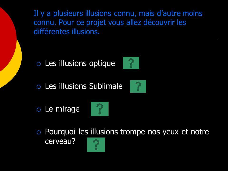 Il y a plusieurs illusions connu, mais dautre moins connu. Pour ce projet vous allez découvrir les différentes illusions. Les illusions optique Les il